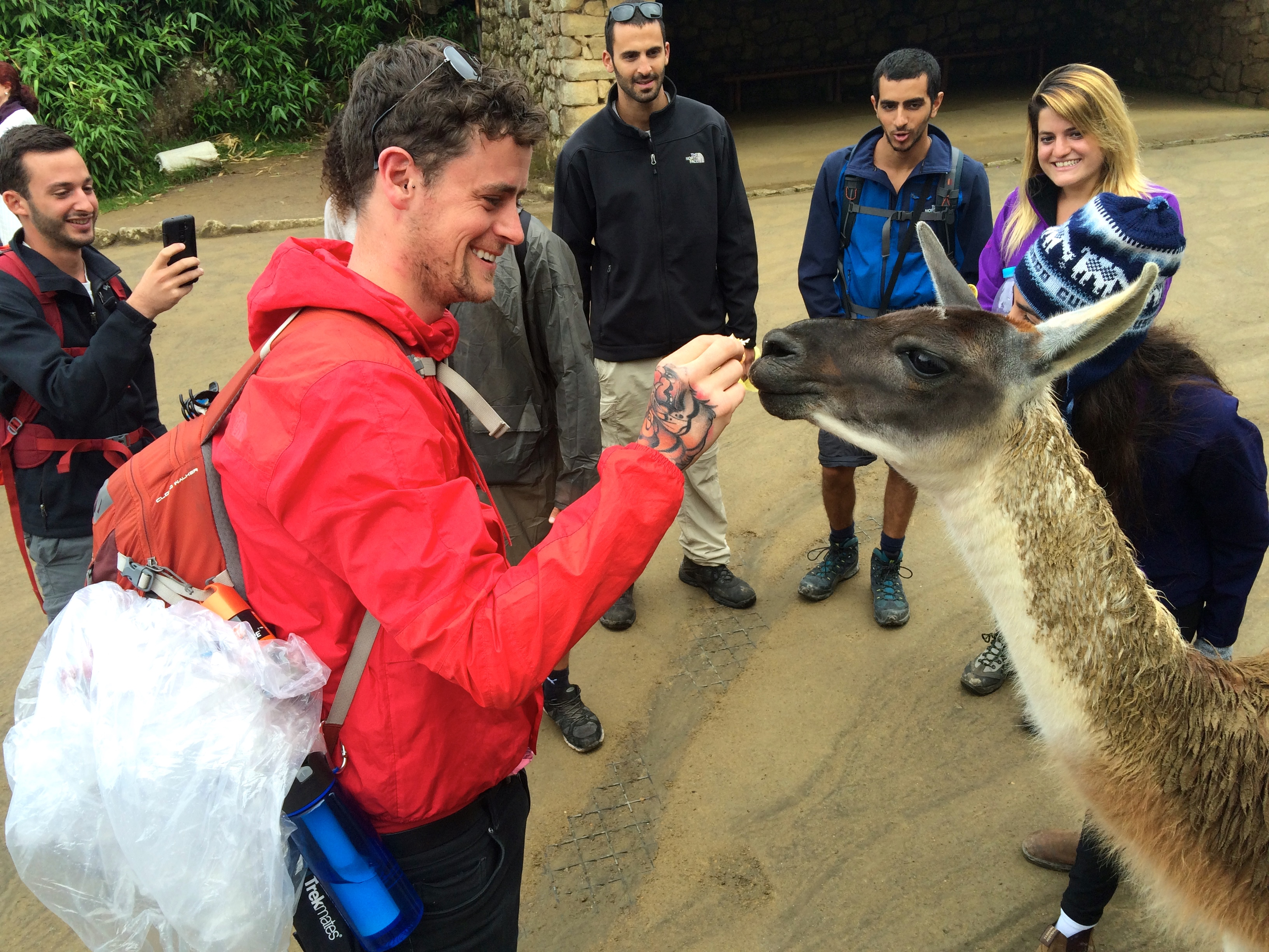 Ryan and llama