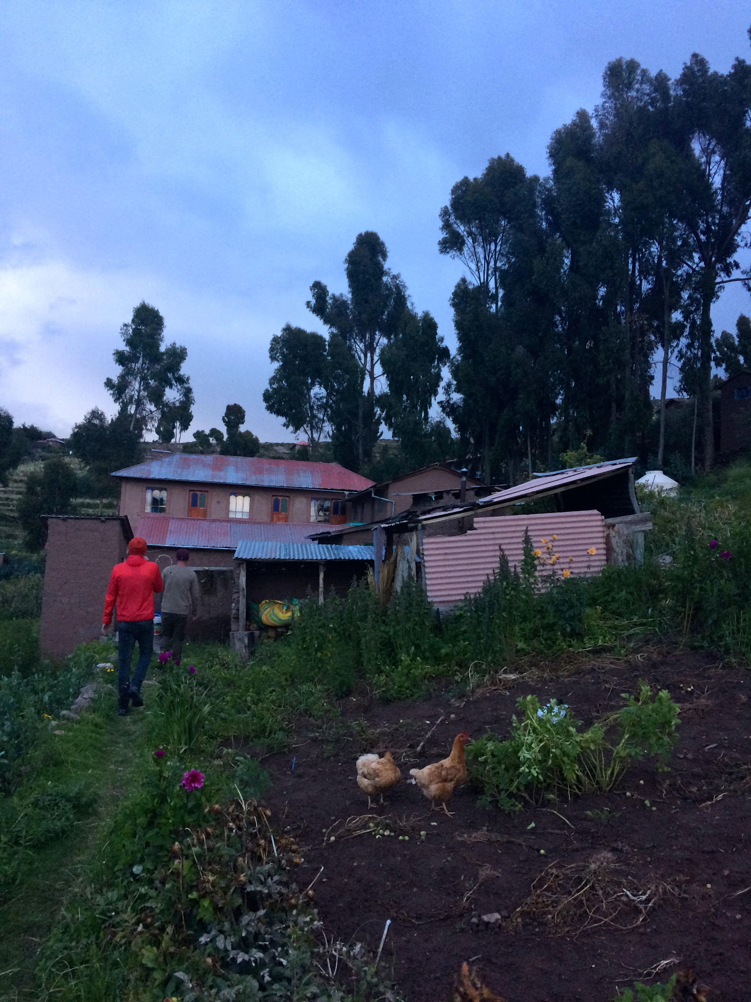 Taquile homestay