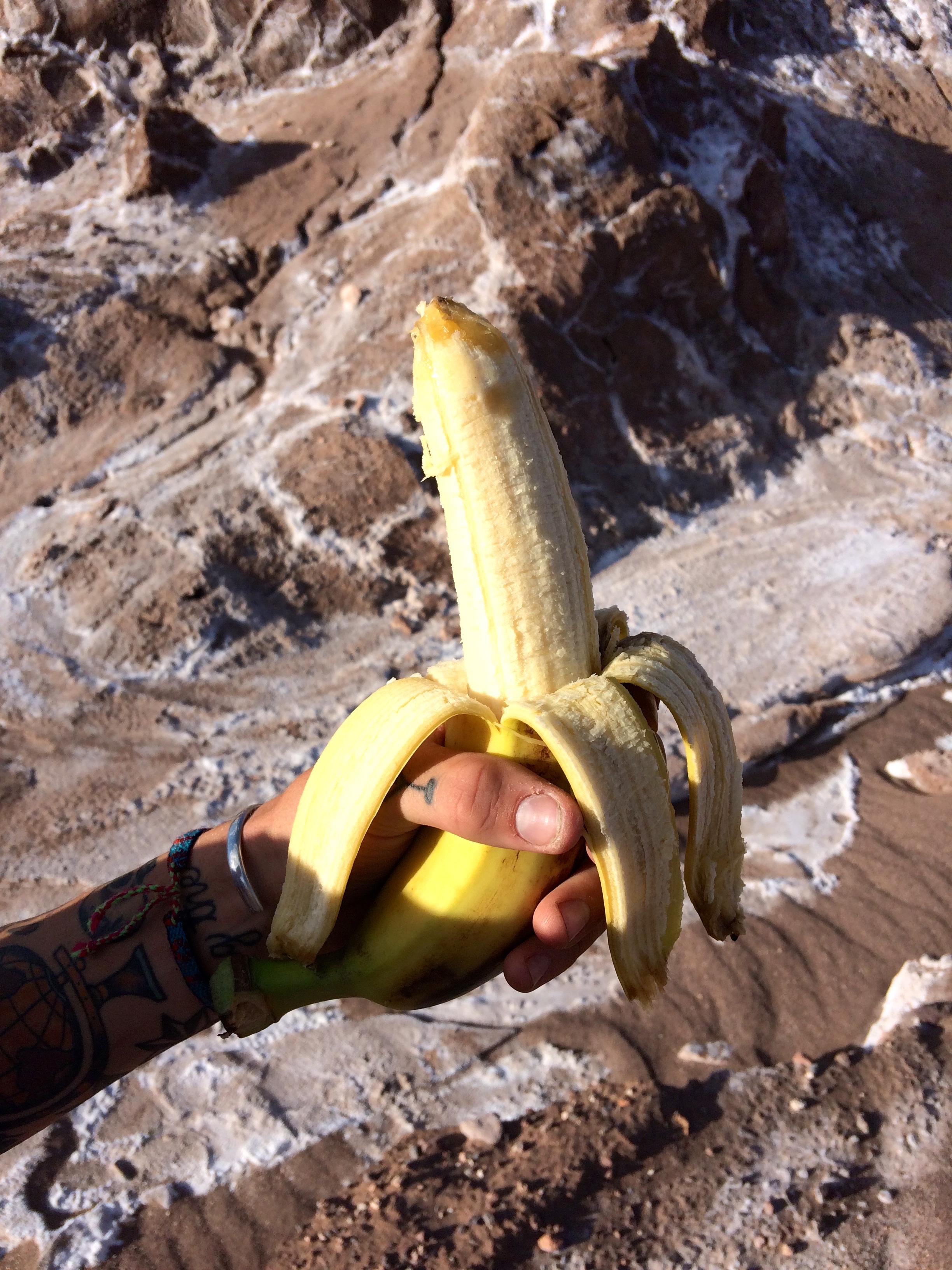 desert banana