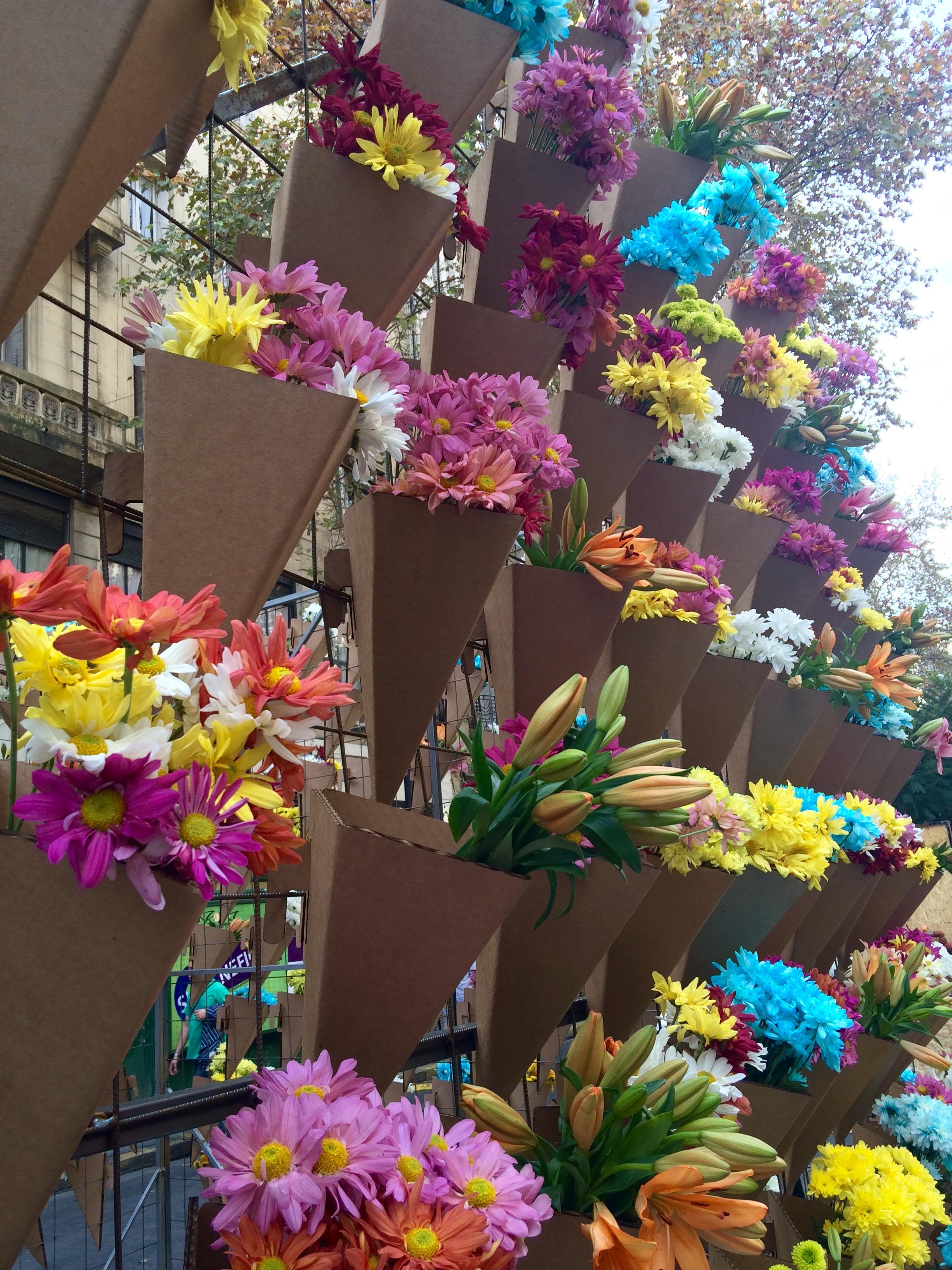 BA flowers