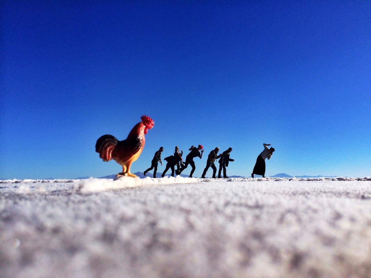 Salar giant cock