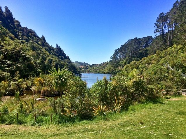 Zealandia 3